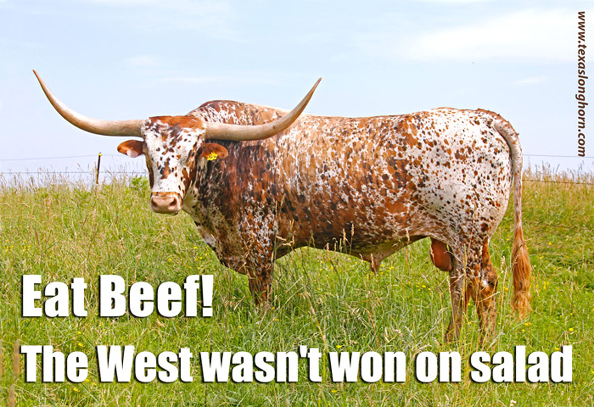 The West Wasnt won on Salad