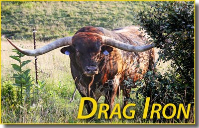 "Drag Iron weighing in at 2260 lbs with a twisty spread of 84-5/8"" promises that Broken Fruit will give birth to a bright brindle heifer calf right on time. That is what he said, but -- nothing is darker than the inside of a cow. Drag Iron semen $100."