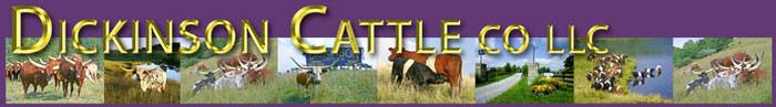 Dickinson Cattle Co, LLC