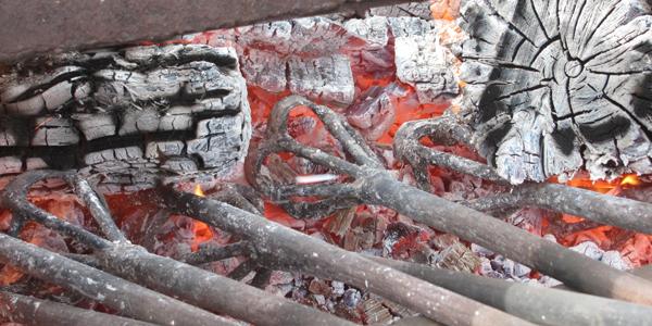 Enews Press Releases Archive Texas Longhorns Watusi Buelingo For Sale In Ohio Dickinson Cattle Co