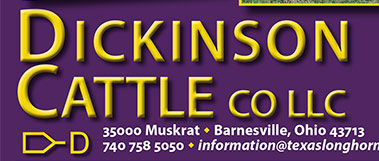 Dickinson Cattle Co. LLC - 35000 Muskrat Rd - Barnesville, OH 43713 - 740 758 5050 - information@texaslonghorn.com