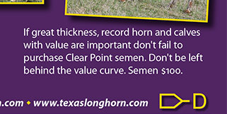 If great thickness, record horn and calves with value are important, don't fail to purchase Clear Point semen. Don't be left behind the value curve. Semen $100 - www.texaslonghorn.com