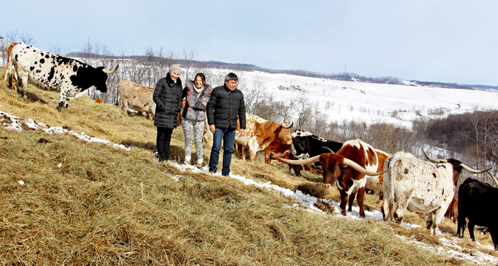 Left to right Dinara Talipova, Aikera Marat, and Yerlan Talipov - Ranchers from Kazakhstan recently researched Texas Longhorn cattle at Dickinson Cattle Co of Barnesville, Ohio