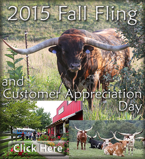 2015 Dickinson Cattle Company Fall Fling and Customer appreciation Day