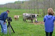 bv_3178 - Shadow Jubilee and RFD Camera Crew
