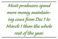 Most producers spend more money maintaining cows from Dec 1 to March 1 than the whole rest of the year.