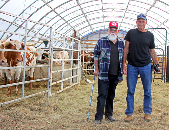Caption: Simon and Erez Cahaner visited Dickinson Cattle Co of Barnesville, Ohio in the Summer of 2016 to evaluate the feasibility of exporting frozen Texas Longhorn embryos to Israel for their 600 cow herd. This is a major introduction of Texas Longhorns to the area.
