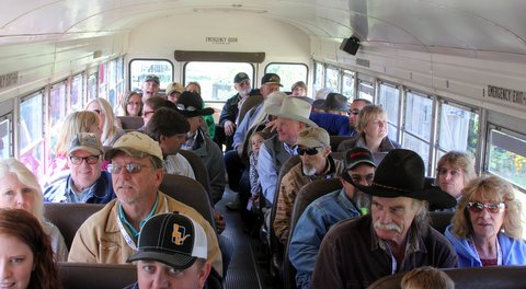 ranch buses bounced guests through Texas Longhorn