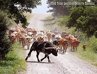 Texas Longhorn Celebrity Calendar
