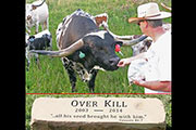 Over Kill - Tombstone 18 I-238397